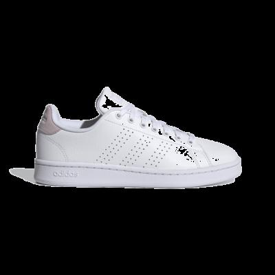 adidas Advantage Cloud White FY9099