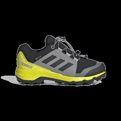 adidas Terrex GORE-TEX Hiking Black FX4169