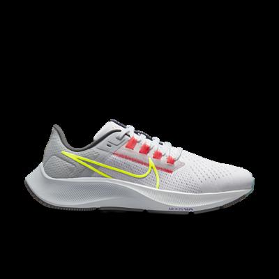 Nike Air Zoom Pegasus 38 LE Greedy (W) DJ3129-001