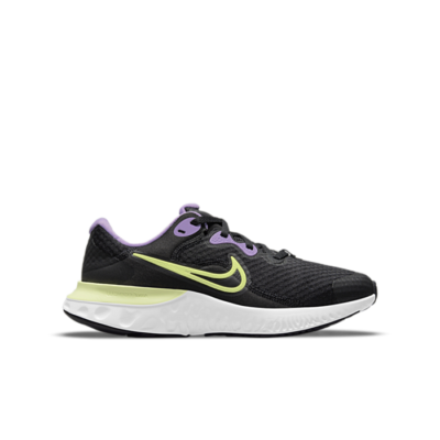 Nike Renew Run 2 Zwart CW3259-013