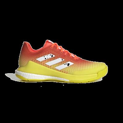 adidas CrazyFlight Volleybal Solar Red H04940