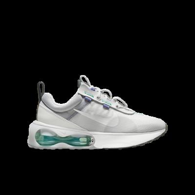Nike Air Max 2021 Grijs DA3199-003