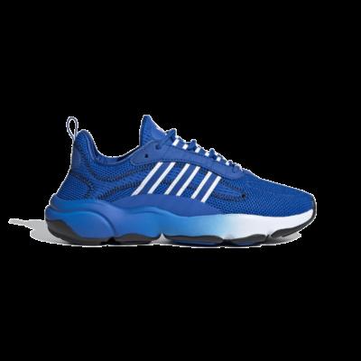 adidas Haiwee Glow Blue EF5789